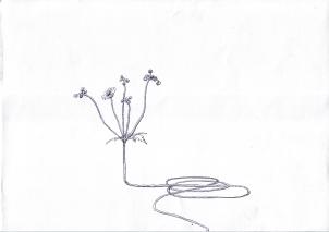 kabel_flower